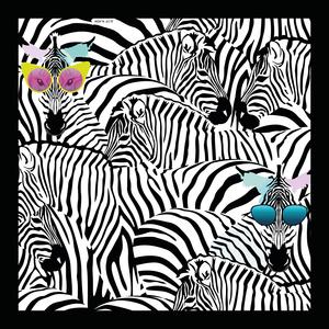 Zebra vision